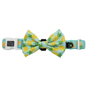 Fine-apple Collar and Bow Tie