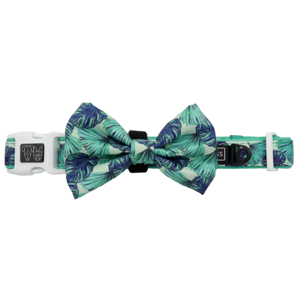 Miami Summer Collar and Bow Tie