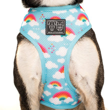 Load image into Gallery viewer, Beary Cute Reversible Harness