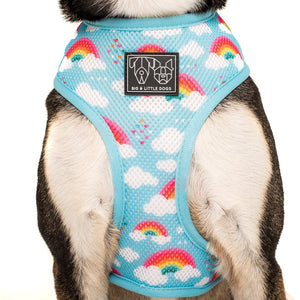 Beary Cute Reversible Harness