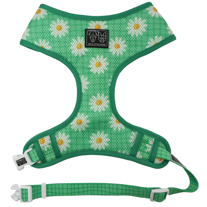 Fresh as a Daisy Classic Harness