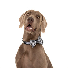 Load image into Gallery viewer, Into The Wild Collar and Bow Tie