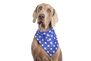 Blue X's Neckerchief