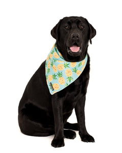 Fine-apple Neckerchief