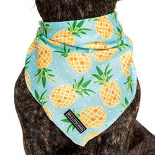 Load image into Gallery viewer, Fine-apple Neckerchief