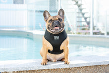 Load image into Gallery viewer, Classic Black Dog Harness