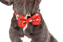 Load image into Gallery viewer, Harry Pupper Collar and Bow Tie