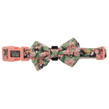 Load image into Gallery viewer, Troppo Toucan Collar and Bow Tie