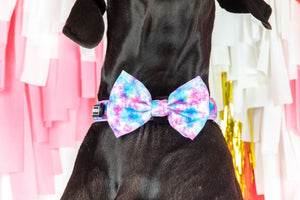 Tie Dye For Collar and Bow Tie
