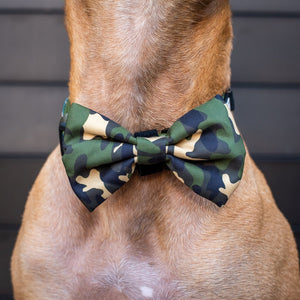 Green Camo Collar and Bow Tie
