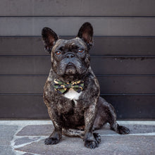 Load image into Gallery viewer, Green Camo Collar and Bow Tie