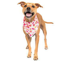 Load image into Gallery viewer, Happy Bark Day Girl Neckerchief