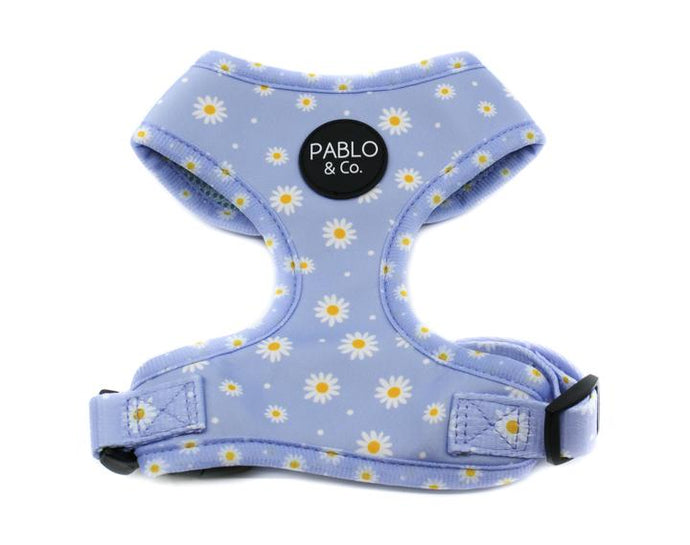 Blue Daisy Harness