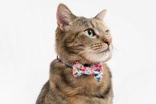 Load image into Gallery viewer, That Floral Feeling Collar and Bow Tie