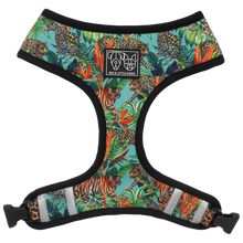 Load image into Gallery viewer, King of the Jungle Dog Harness