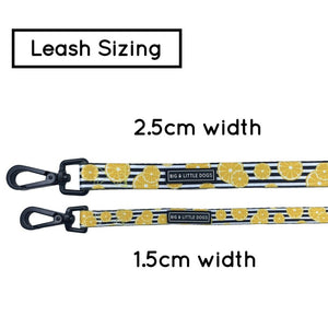 You're The Zest Dog Leash