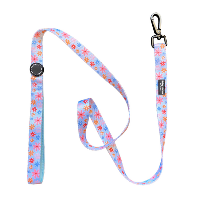 Daisys & Paws Leash