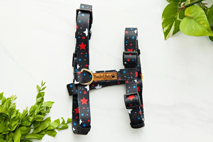 The 'Dance Amongst the Stars' Strap Harness