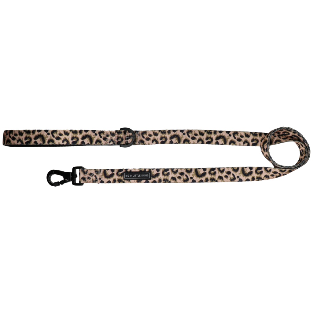 Luxurious Leopard Leash