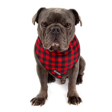 Load image into Gallery viewer, Plaid to the Bone Bandana