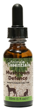 Load image into Gallery viewer, Mushroom Defence Tincture 30ml