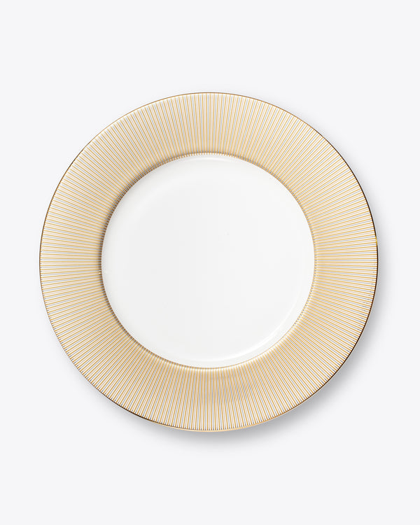 Luminous Charger Plate