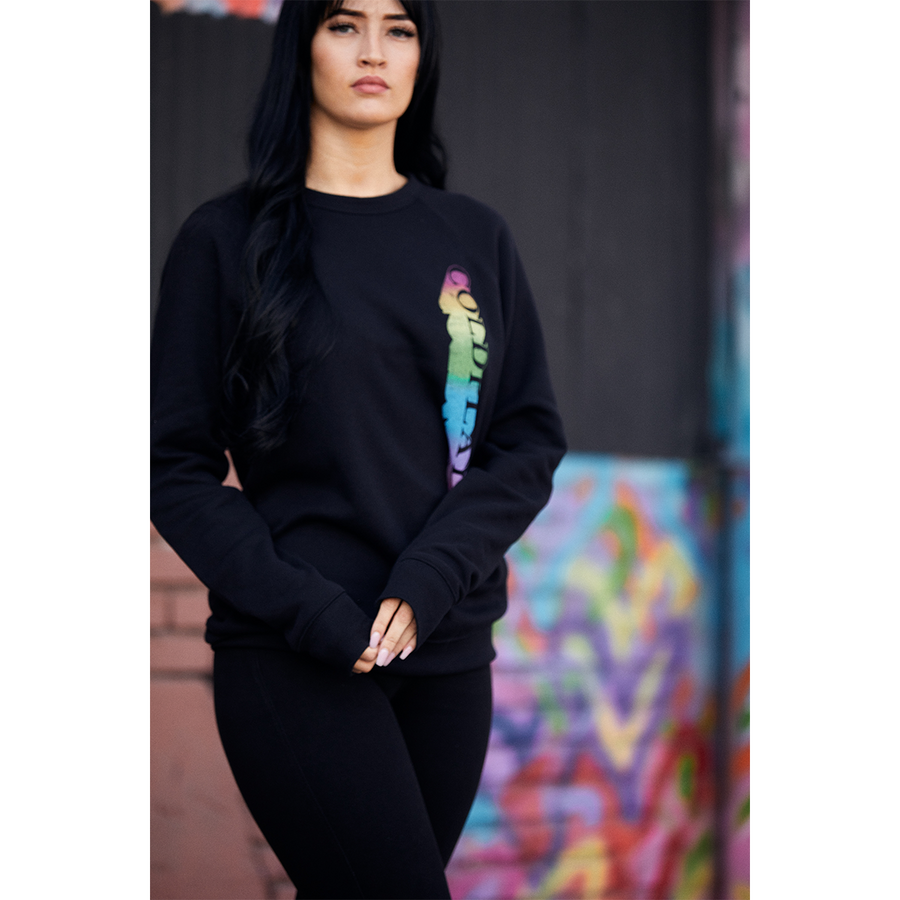 SPECTRUM CREWNECK SWEATSHIRT
