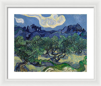Vincent van Gogh The Olive Trees Framed Canvas Ready To Hang Classical Art Giclee Wall Art Print Interior Design Museum Quality