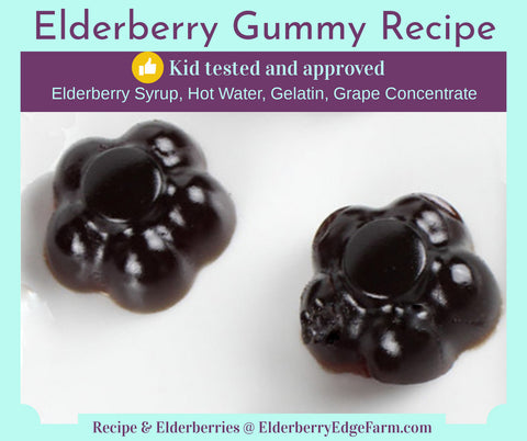 Elderberry Gummies Recipe