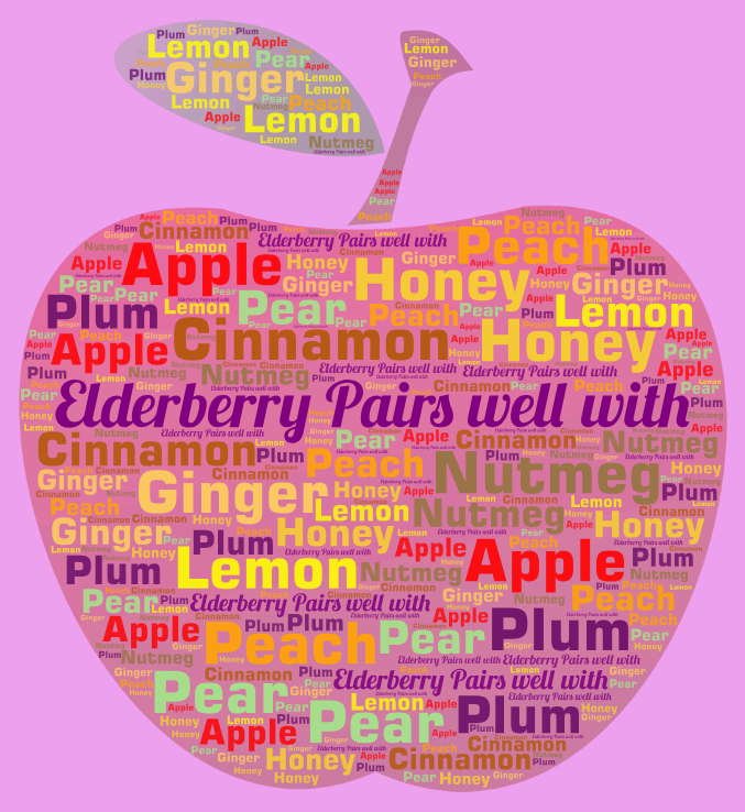 Elderberry pairs well with word cloud. Elderberry Recipes
