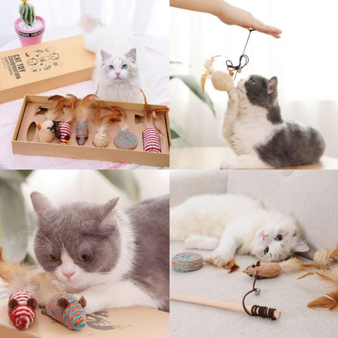 cat traditional teaser toy