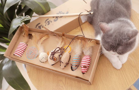 The 7-in-1 sisal fiber teaser toy set