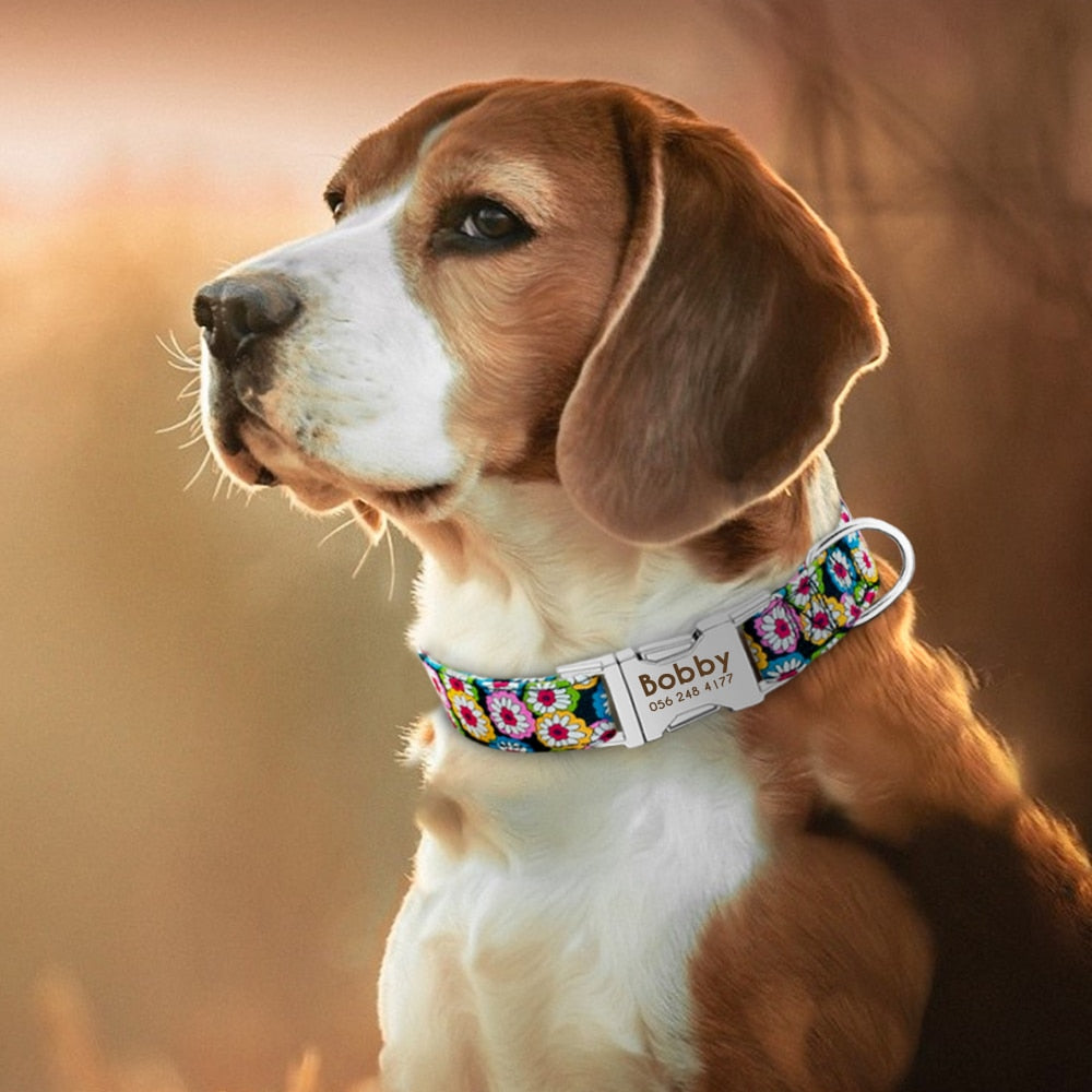 Quick Release Pet Collar with Personalized ID Tag Engraving