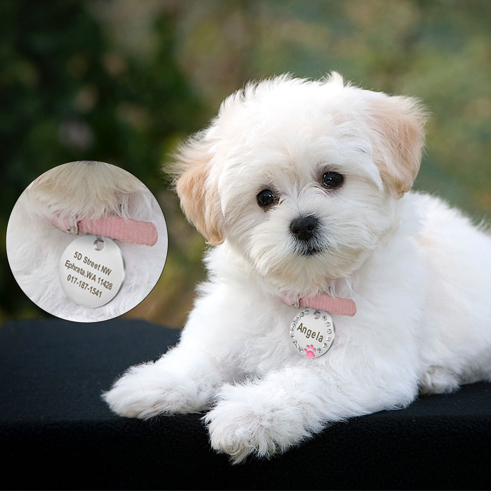 Personalized Pet ID Tag with Engraving - Round Diamond & Paw