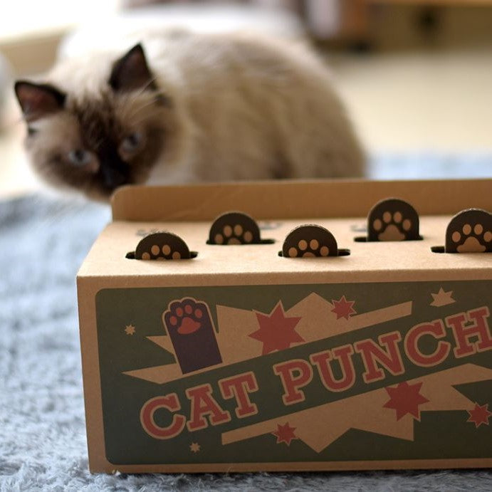 CAT PUNCH the Original Punch Box Teaser Toy for Cats (Extra 10% off using promocode LAZYPETS10)