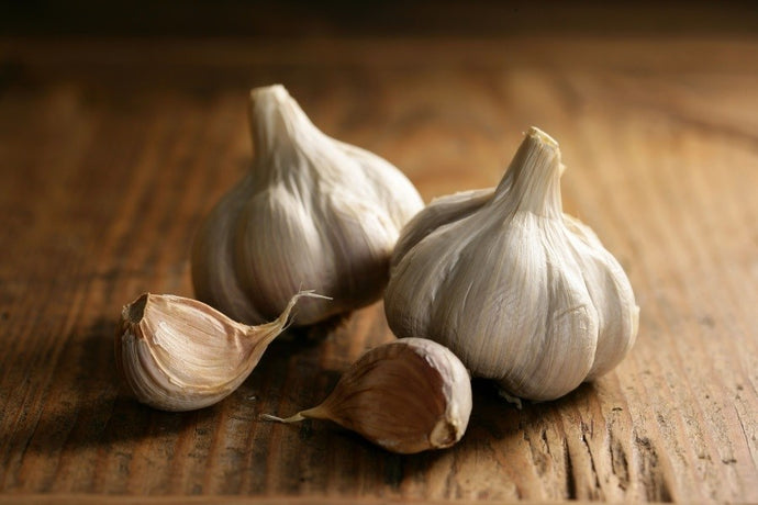 Garlic, your precious ally against cholesterol