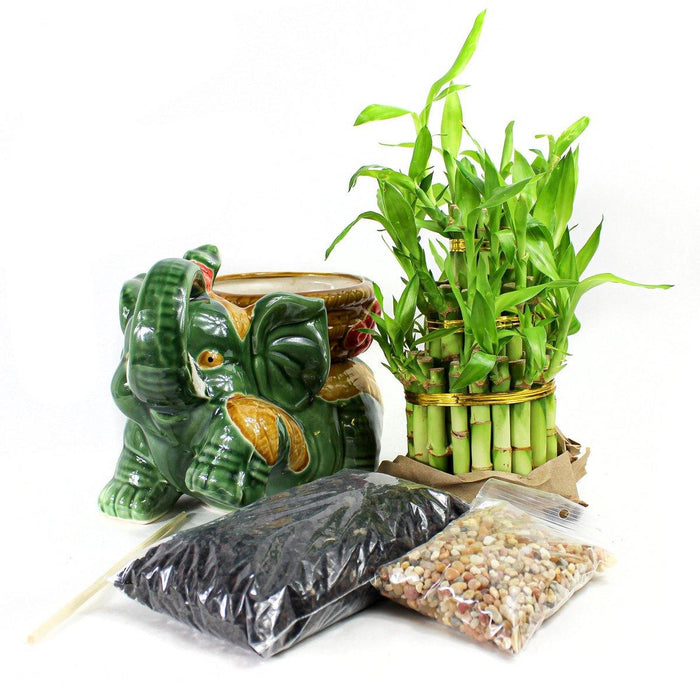 Large Elephant Bamboo Kit