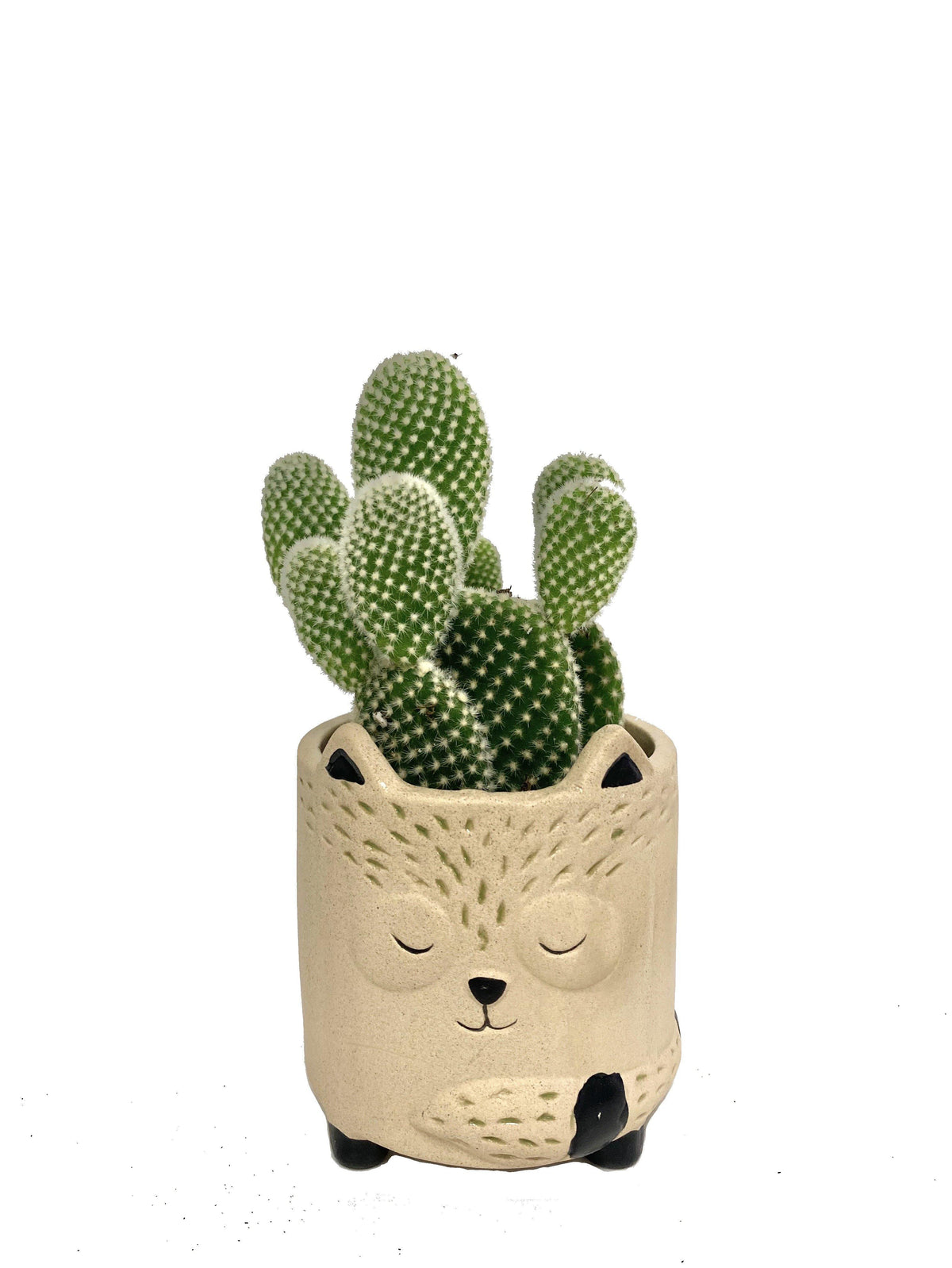 Animal Planters - Geoponics Inc