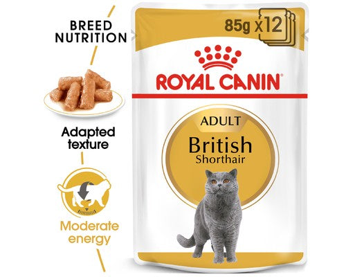 Royal Canin British Shorthair Gravy - Pikabu