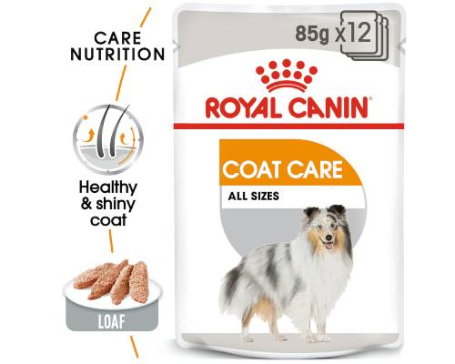 Royal Canin Adult Coat Care Loaf Wet Food Pouches - Pikabu