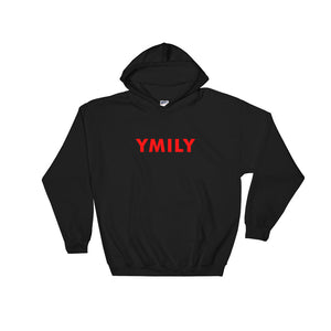 Classic Red Logo Hoodie
