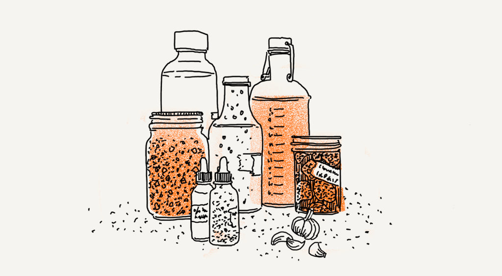 Spotlight on Vinegar Fermentation