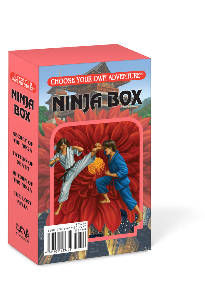 Load image into Gallery viewer, Ninja Box