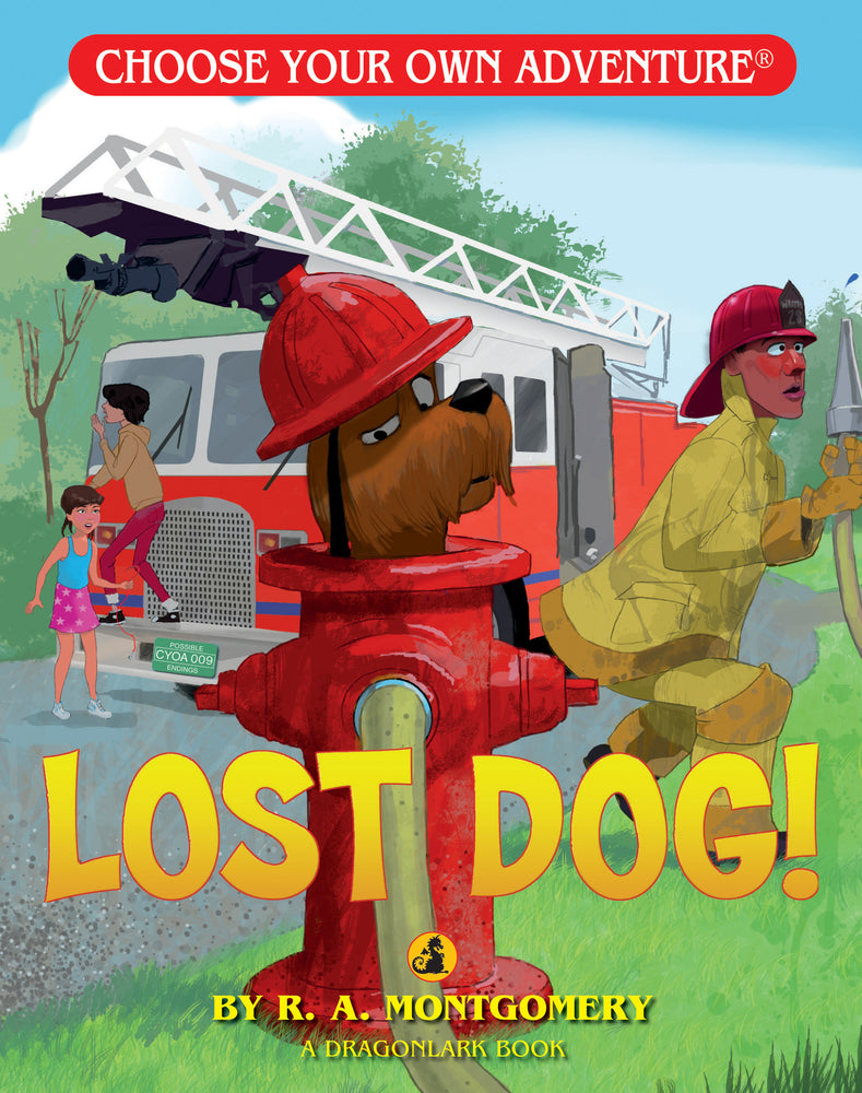 Choose Your Own Adventure Lost Dog!