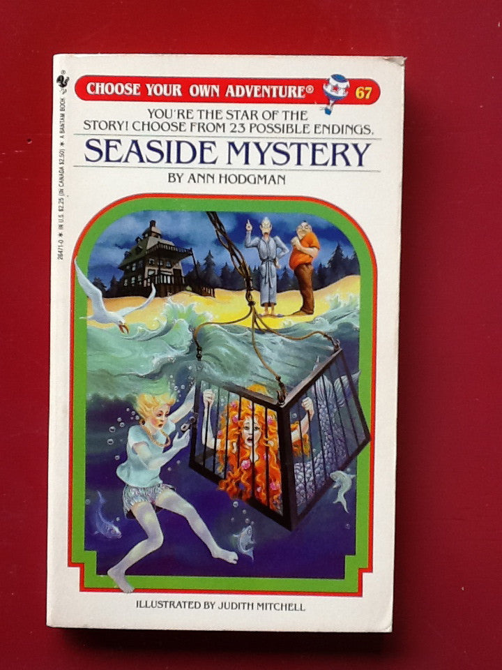 Choose Your Own Adventure Vintage Seaside Mystery