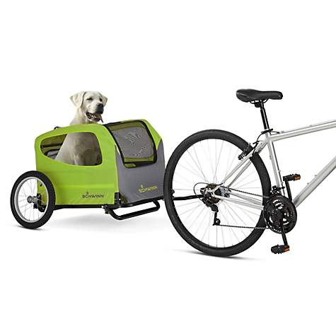 dog riding in a pet carrier behind a bike