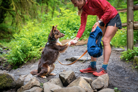 Dog earning a treat on the trail