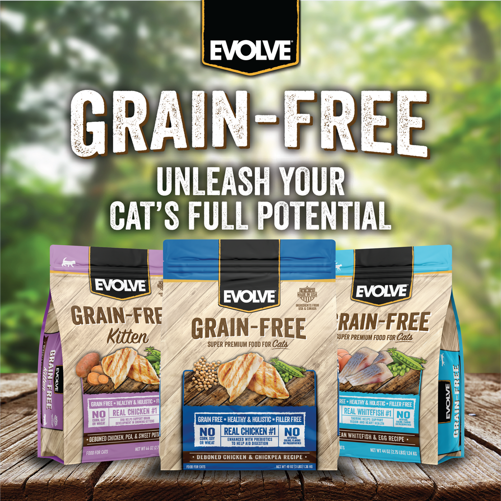 Evolve Grain Free Deboned Chicken & Chickpea Recipe Cat Food