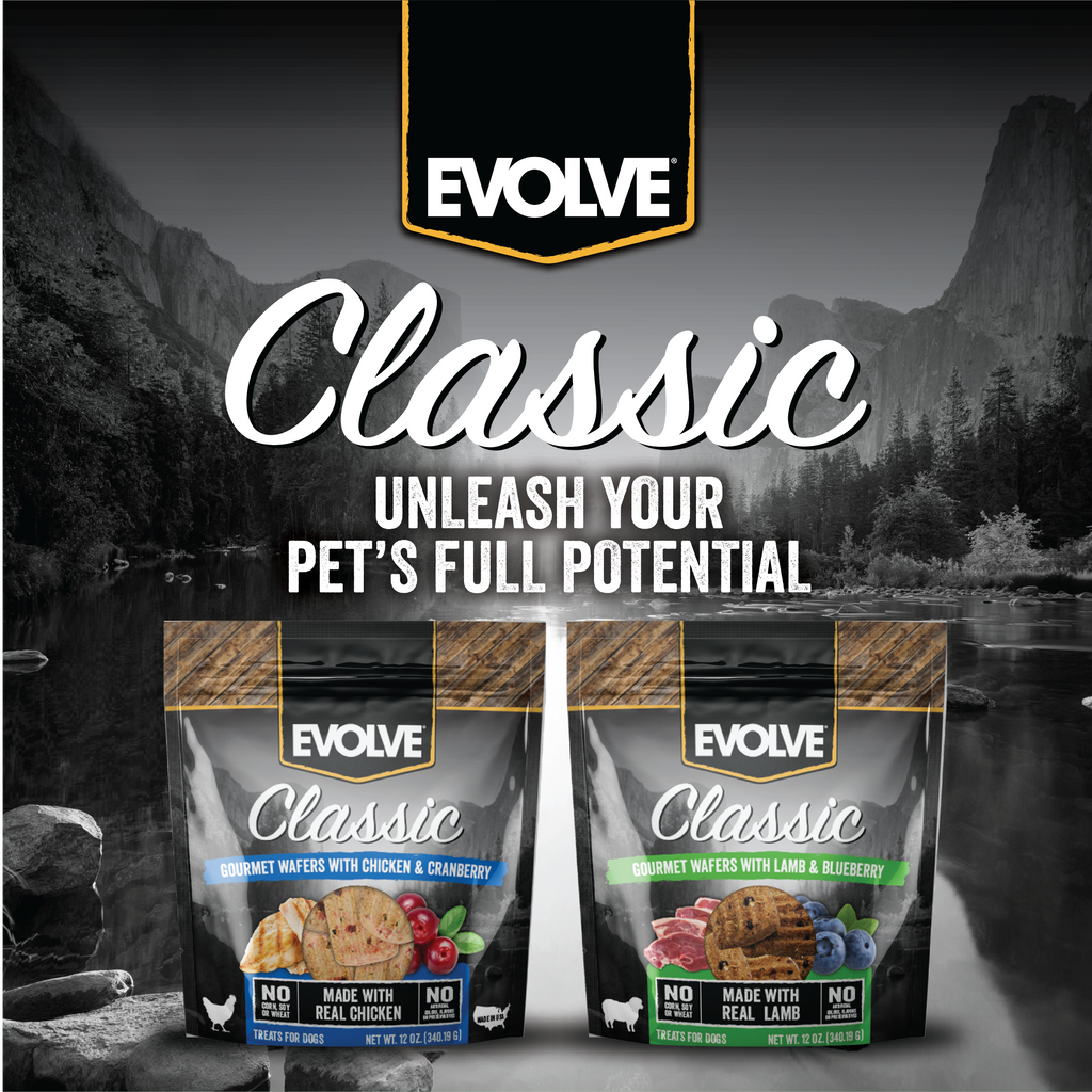 Evolve Classic Wafers with Lamb & Blueberry
