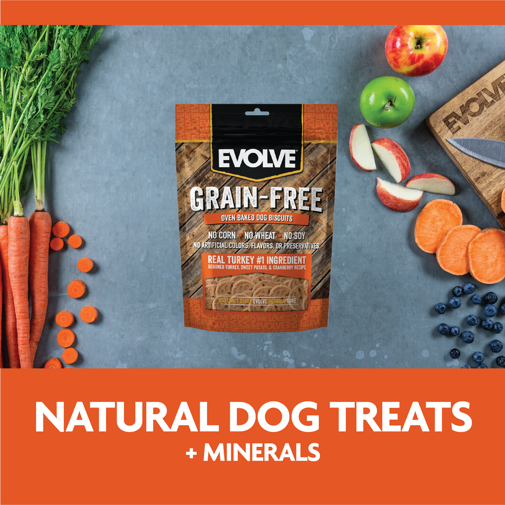 Evolve Grain Free Oven Baked Dog Biscuits Turkey